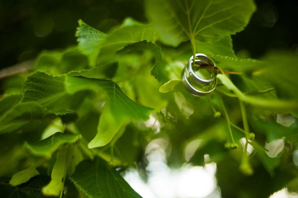Hochzeitsfotograf Gleiberg-8